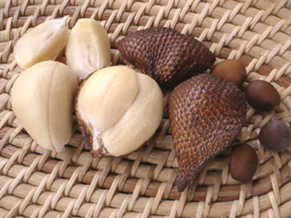Usefulness Salak Fruit