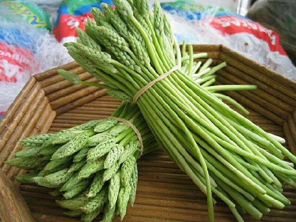 groen asperges koken