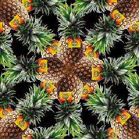 bewaren verse ananas